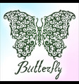 beautiful pattern with butterfly vector image vector image