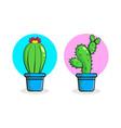 cactus icon design template vector image vector image