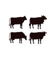 cow icon design template isolated vector image vector image