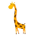 cute giraffe cartoon isolated on white background vector image vector image