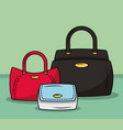 fashion women bags vector image vector image