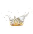 Foam splash vector image vector image
