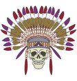skull with indian headdress vector image vector image