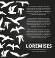blackboard poster with white flying birds vector image