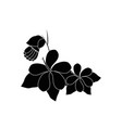 flowers and leaves icon vector image vector image