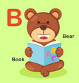 Isolated animal alphabet letter b-bear book