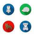 koalaowl bearhedgehoganimal set collection vector image vector image