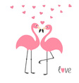 Pink flamingo couple and hearts Word love Exotic vector image vector image
