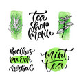 tea shop menu calligraphic phrase for cover vector image vector image