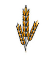 Wheat ears icon image