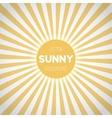 Sunburst EPS10 Background Sunny Stripes vector image