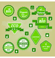 Collection of bio and eco organic labels natural vector image