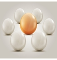 Eggs in the circle vector image vector image