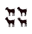 goat icon design template isolated vector image