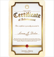 gold detailed certificate vector image vector image