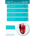infographics heart 3 vector image vector image
