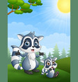 raccoon family mother and her child cartoon in th vector image vector image