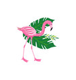 tropical pink flamingo with exotic foliage cartoon vector image