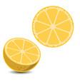 lemon3 vector image
