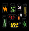a set of organic ingredients vector image