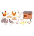 chickens farm birds isolated set goose duck hen vector image vector image