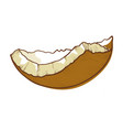 coconut half shell icon cracked brown coco nut vector image