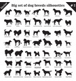 dogs silhouettes 2 vector image vector image