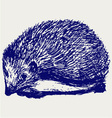 Hedgehog animal vector image vector image