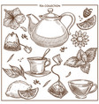 Tea collection sketch icons of cups teapot