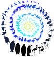 Birds in spiral vector image