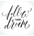 follow your dream inspirational quote vector image vector image