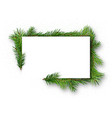 frame with coniferous twigs vector image vector image