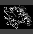 Frog with flower in black background