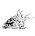 hand drawn sketch of bonfire in black isolated on vector image