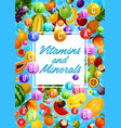 organic fruits healthy food vitamins and minerals vector image vector image