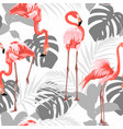pink flamingo grey graphic palm leaves vector image
