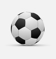 realistic soccer ball isolated vector image vector image