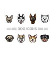 Set icons dogs vector image vector image