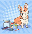 pop art corgi dog with medication pills vector image