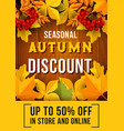 autumn sale banner with fallen leaves design vector image vector image
