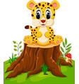 cute baby cheetah sitting on tree stump vector image vector image