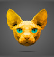 Sphynx cat low poly Gold Side light vector image