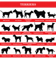 terriers silhouettes vector image vector image