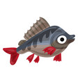 trout fish icon cartoon style vector image