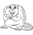 beaver animal cartoon coloring page vector image vector image