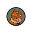 Pitbull Dog Mongrel Head Circle Woodcut vector image vector image