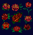 red roses with green leaves set floral design vector image
