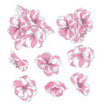 set of cherry blossoms collection of pink sakura vector image vector image