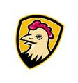 hen head shield mascot vector image