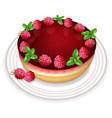 raspberry cake realistic sweet tasty vector image vector image